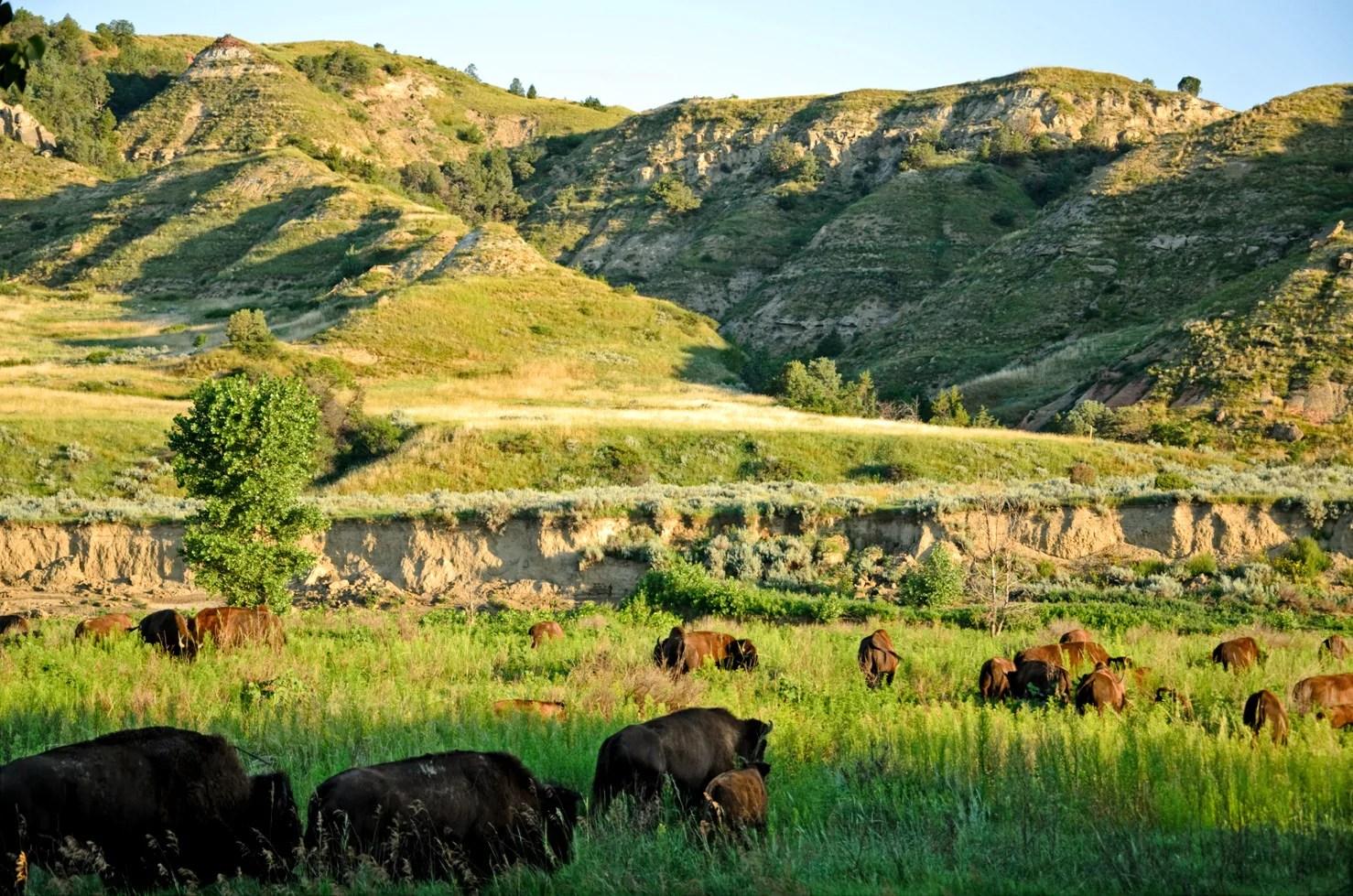 Discovering The U S A North Dakota