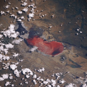 Lake Natron from space