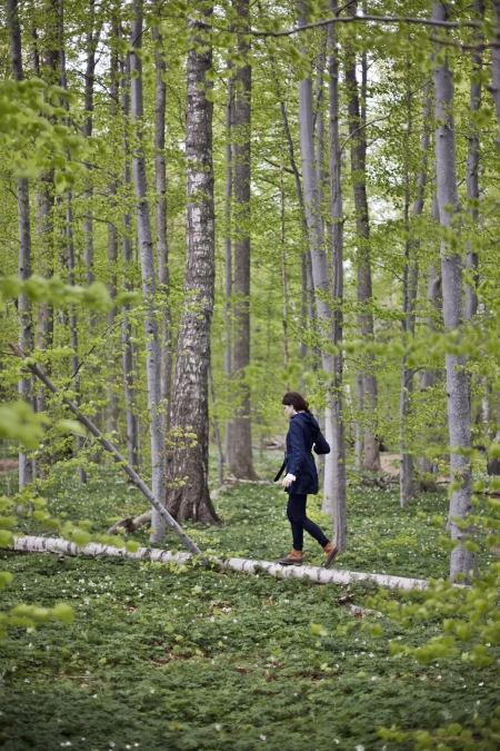 Researchers found that small post-meal walks are even more efficient than a single 45-minute walk.