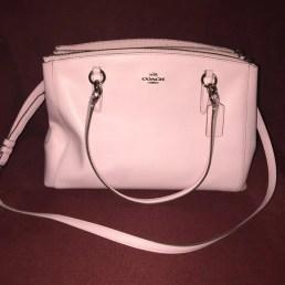 Nice purse, but worth a Tasing?