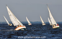 Image Gallery Of Annapolis Sailboat Races