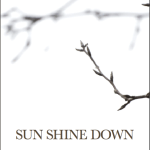 "The big cover reveal for ""Sun Shine Down"""