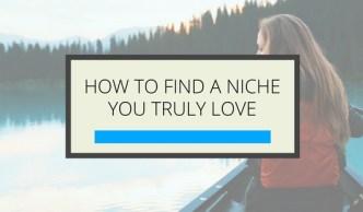 Find Your Niche - Online Business - Gillian Perkins