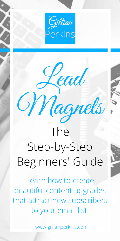 Lead Magnet Guide for Beginners