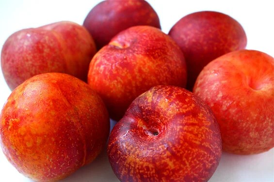 Image result for pluot