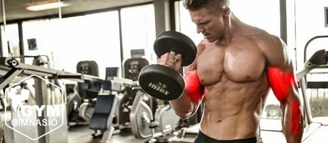 ejercicio gimnasio curl biceps estilo martillo
