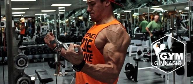 ejercicio gimnasio curl biceps con polea baja