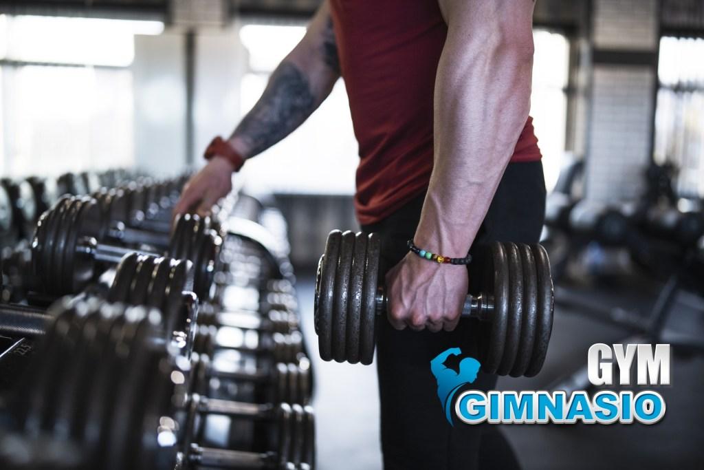 quien es gimnasio gym
