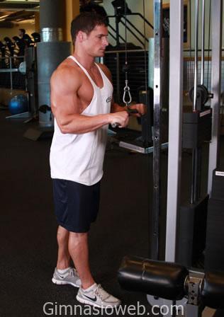 agarre-triceps