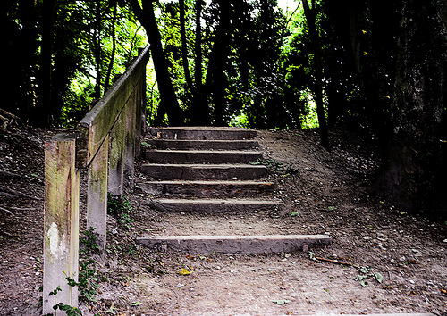 the-steps