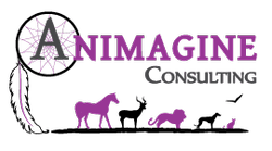 animagine-consulting-logo