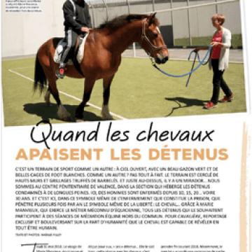 «Quand les chevaux apaisent les détenus» – Magazine Cavalière N°70
