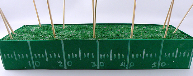 styrofoam-field