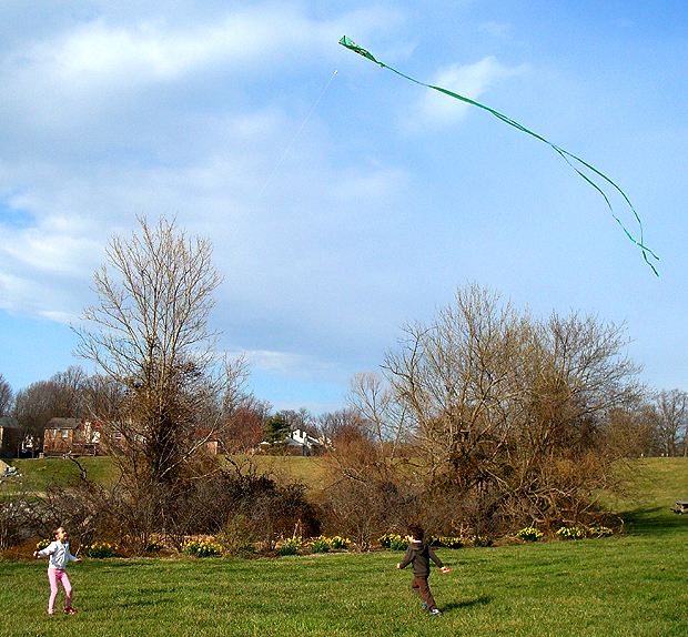 kite-7