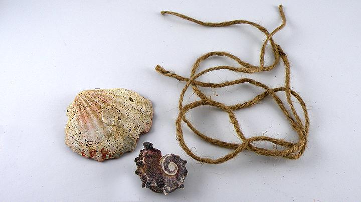 shells-twine
