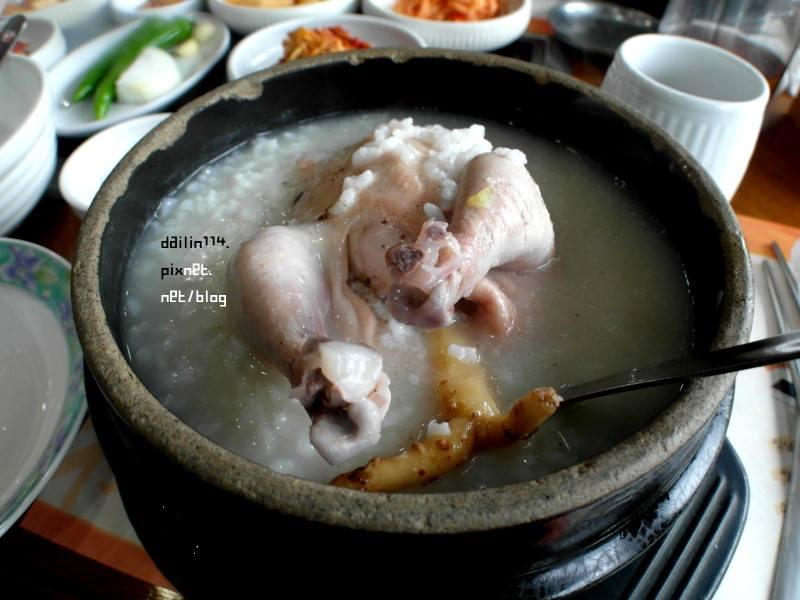 食在濟州》濟州島自由行必吃CP值超高–>秘菀人參雞湯(제주 비원 삼계탕)吃完還可以出來賞櫻花