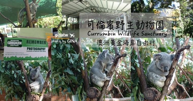 澳洲黃金海岸自由行》可倫賓野生動物園(Currumbin Wildlife Sanctuary)看無尾熊跟袋鼠囉!