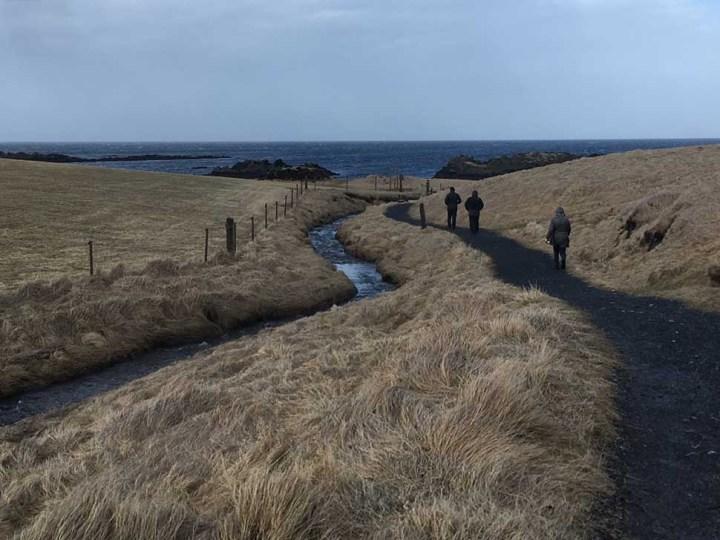 Weg zum Strand Halbinsel Vatnsnes Islands Norden Roadtrip Island gindeslebens.com © Thomas Mussbacher und Ines Erlacher