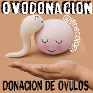 donante de óvulos hazte
