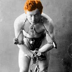 Houdini - Ginger Magician
