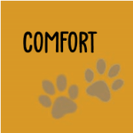 Doggy Comforts