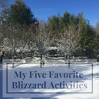My 5 Favorite Blizzard Activities