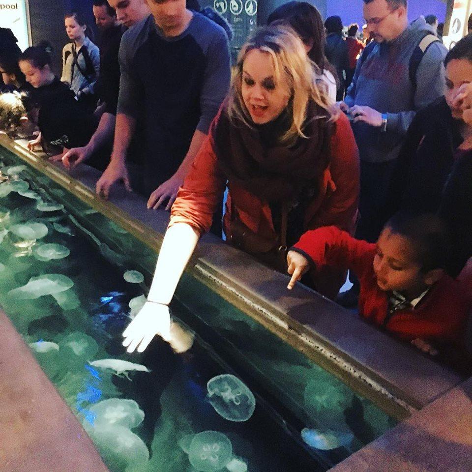 Jellyfish Aquarium Touch