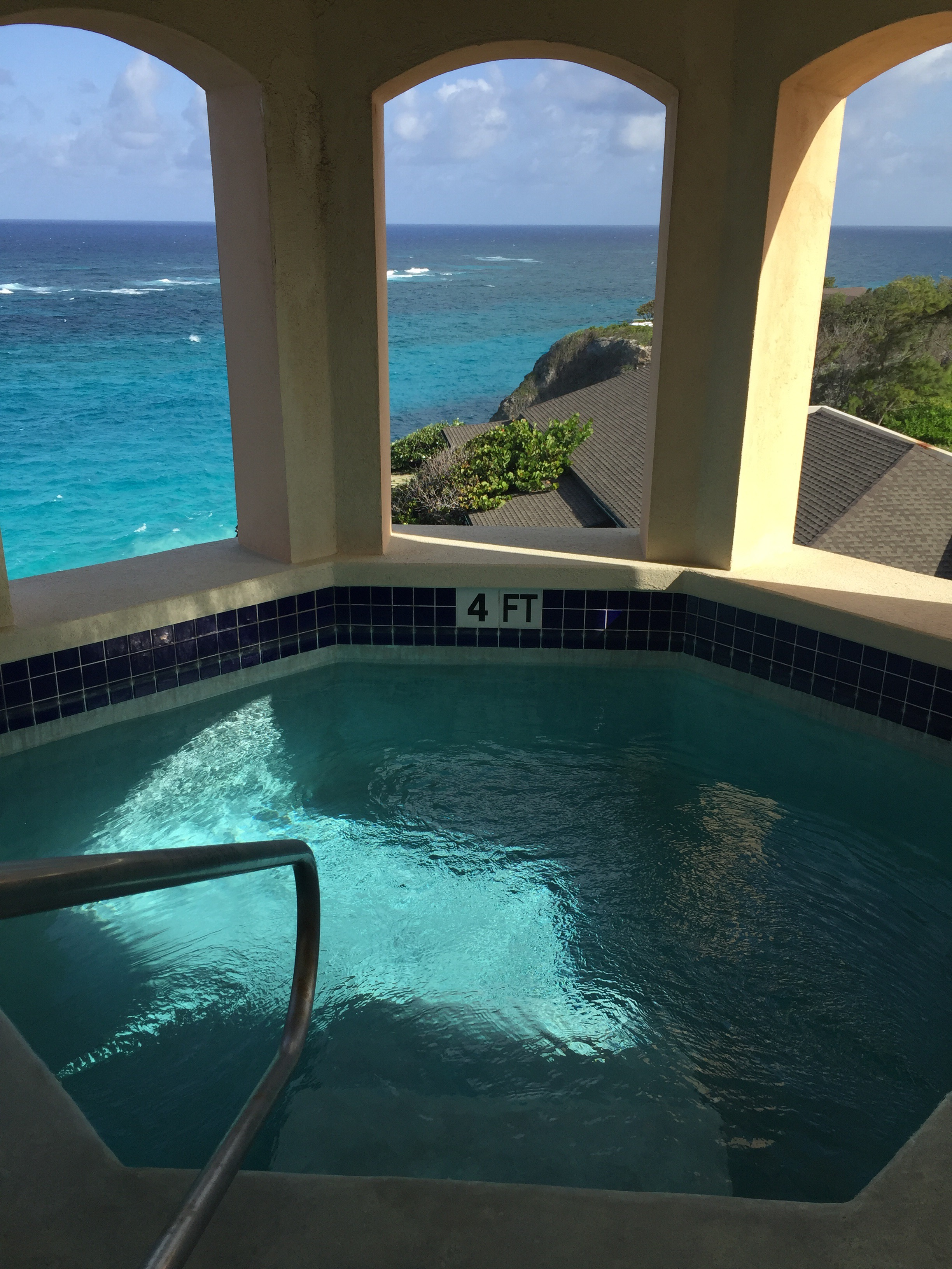 Plunge Pool View