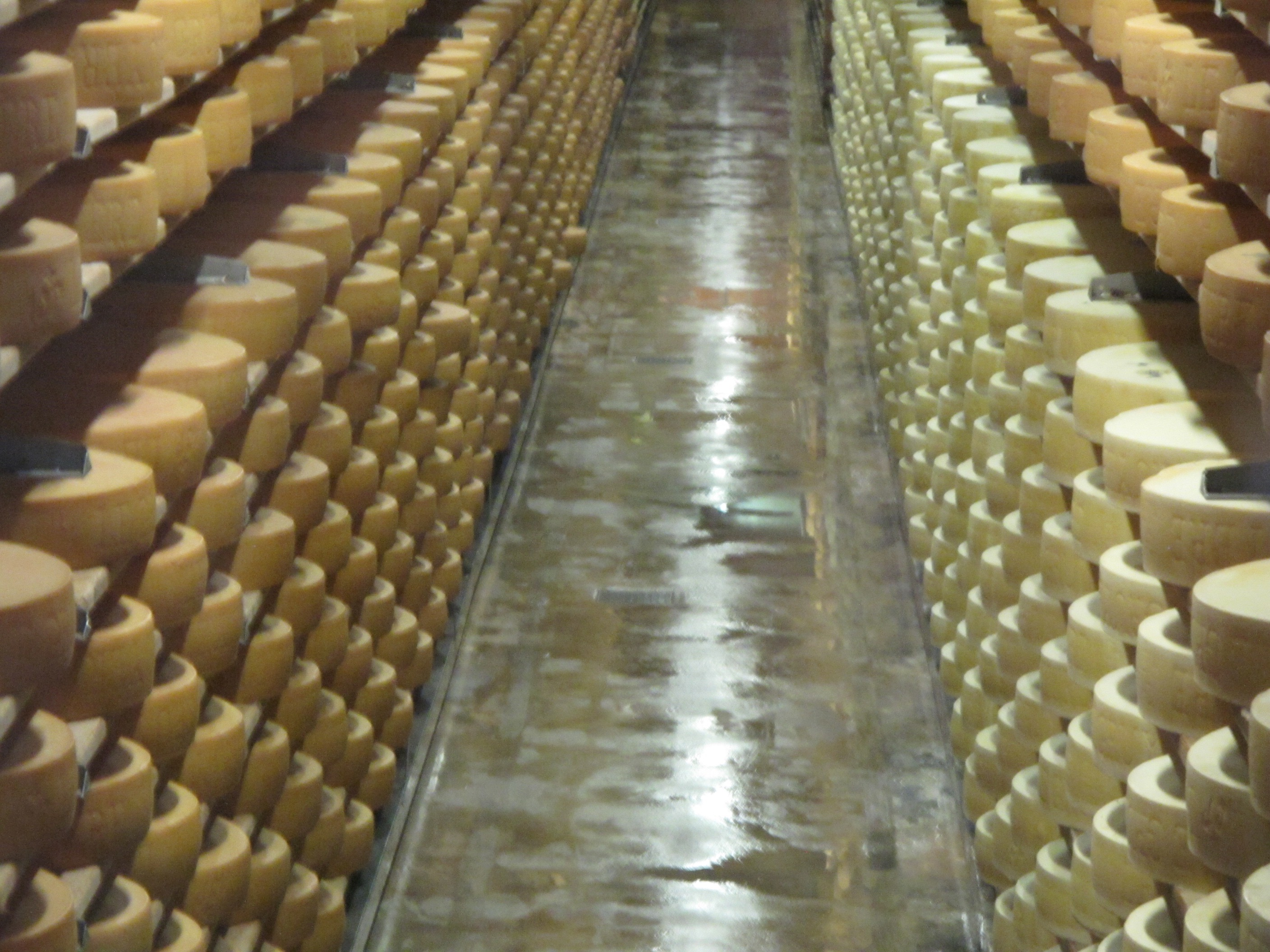 gruyere-cheese-storage-switzerland