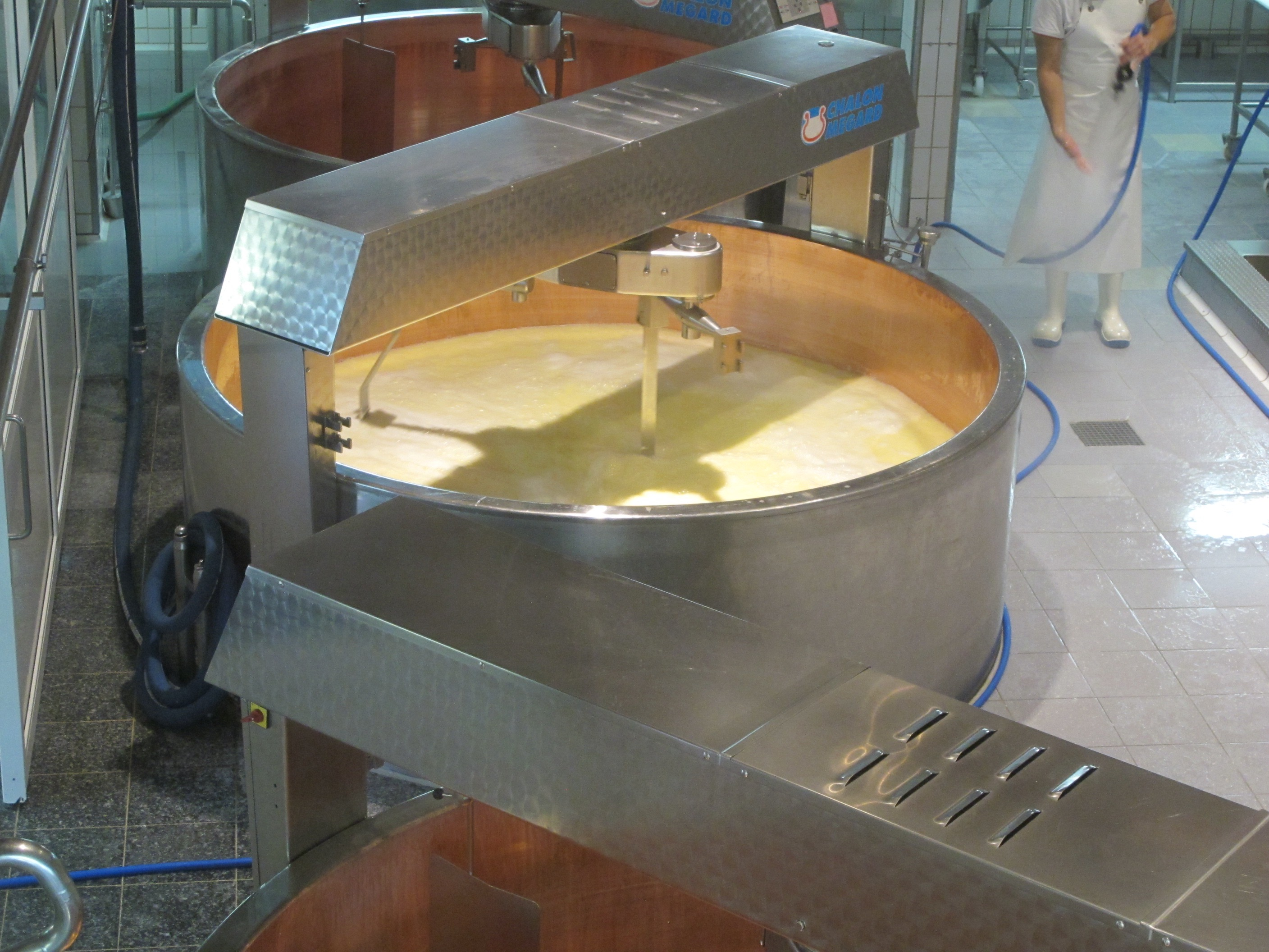 gruyere-cheese-switzerland-process