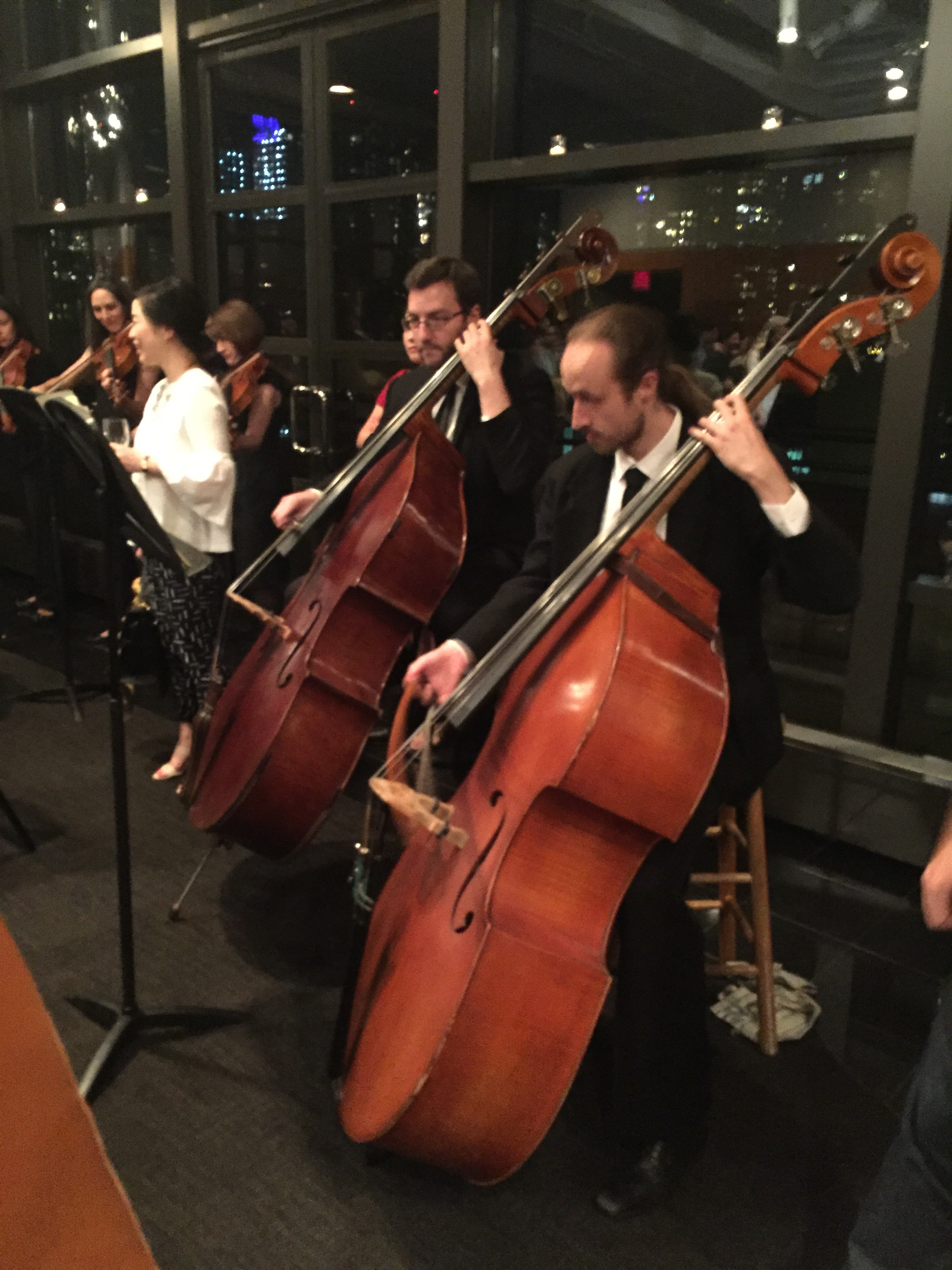 Double Bass Experiential Orchestra