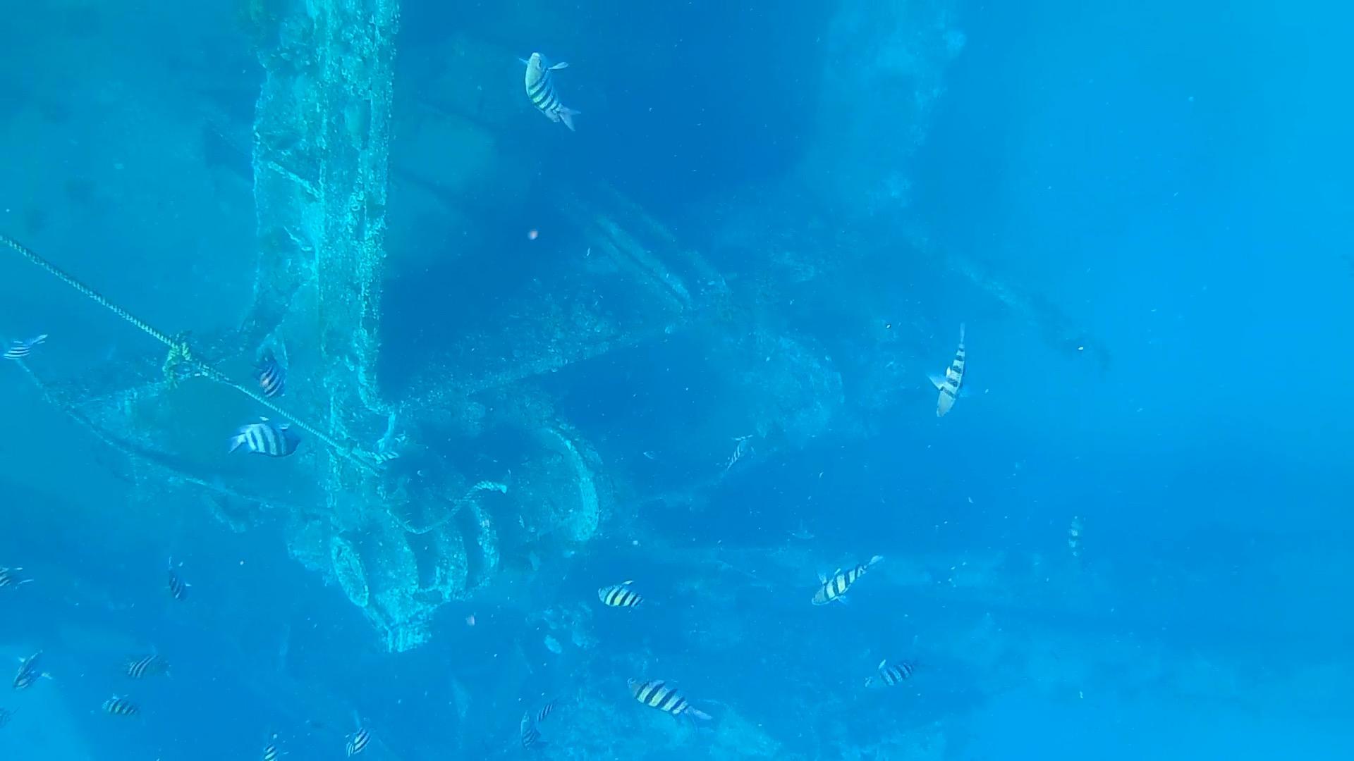 shipwreck aruba