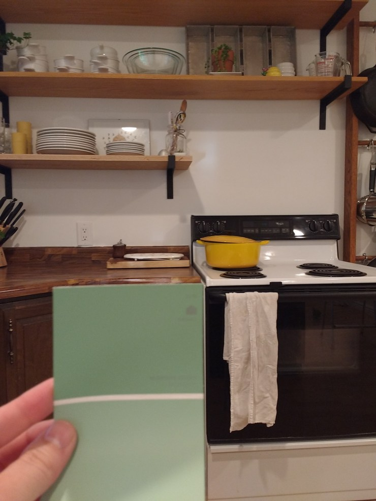 kitchen-before-progress-cabinet color