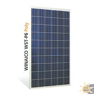 Pannelli fotovoltaici WINAICO WST-250P6