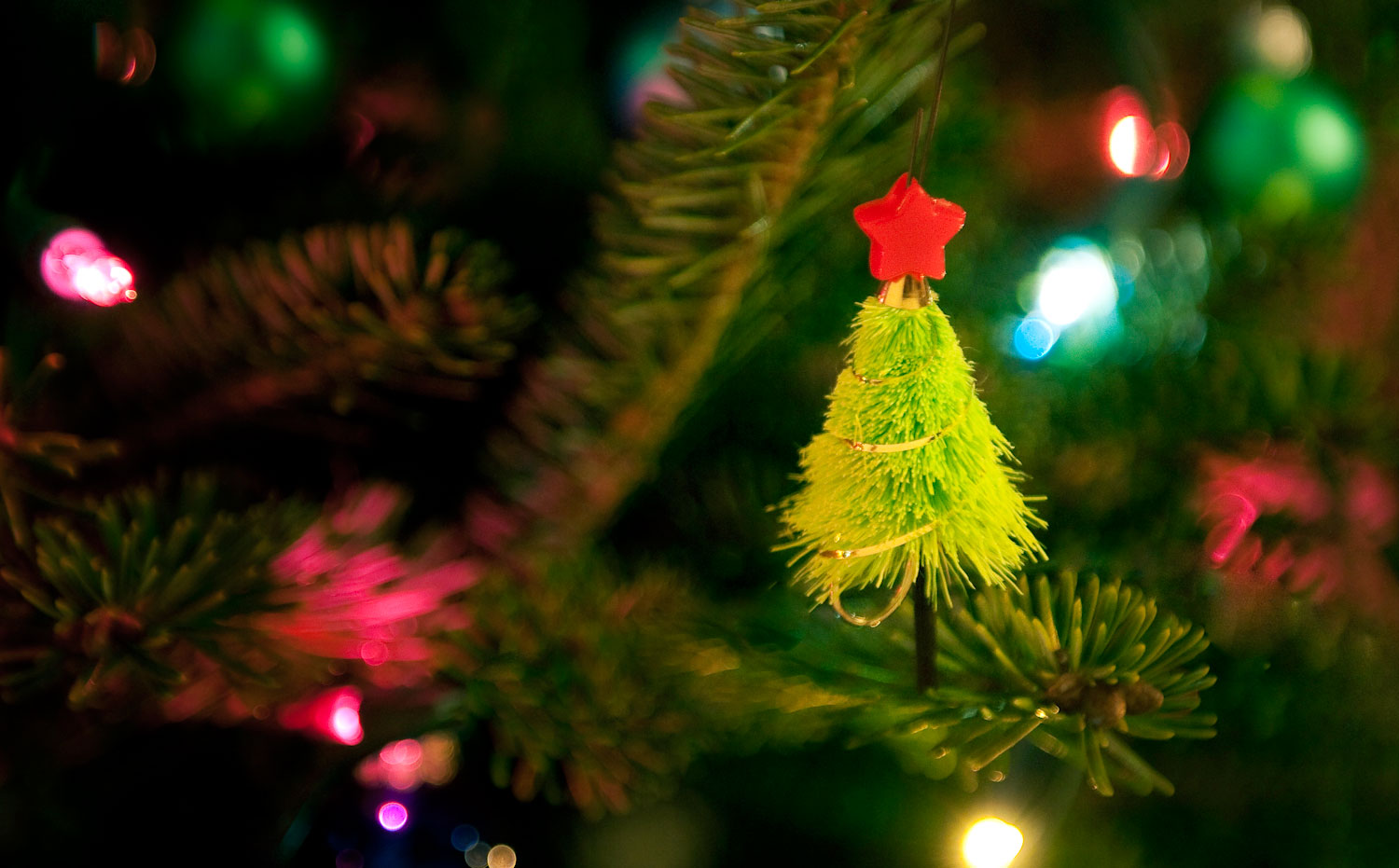 The Christmas Tree Fly Fly Fishing Gink And Gasoline