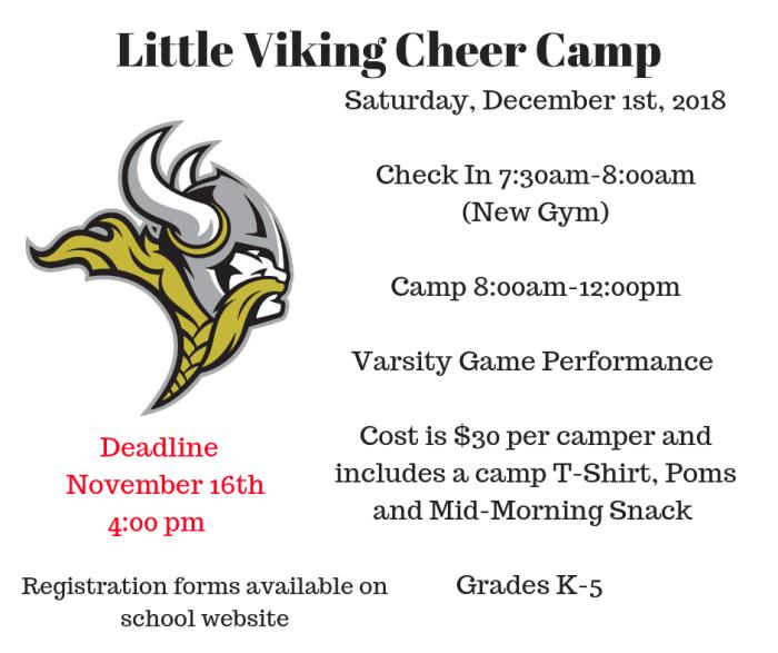 Little Viking Cheer Camp