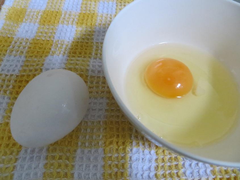 davao_egg1