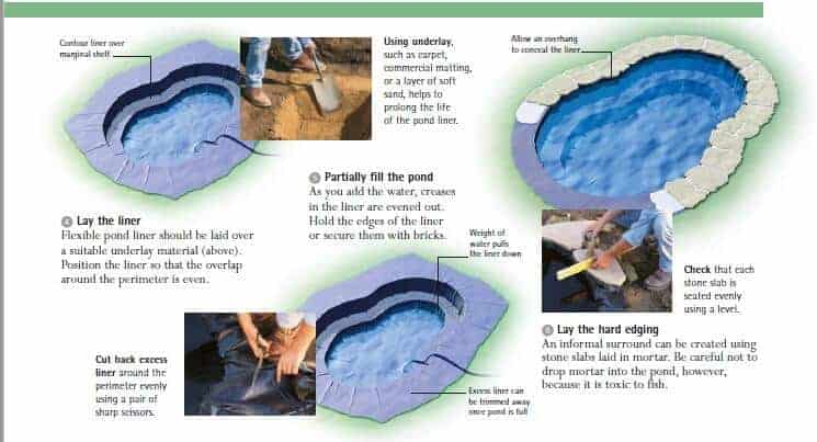 koi pond setup koi pond construction guide