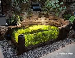 indoor koi pond ideas pinterest collection of Nicole Spences