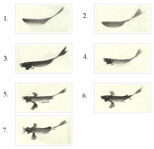 koi art chinese calligraphy step by step koi fish painting