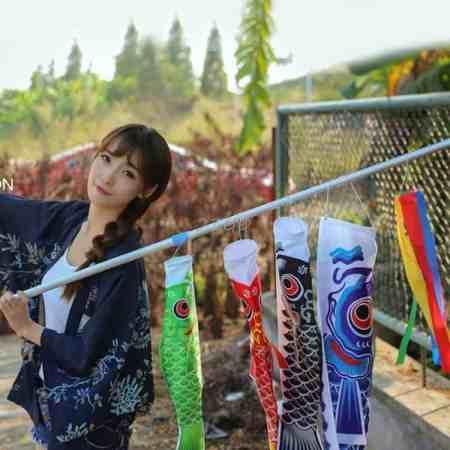 koinobori japanese koi windsock 1