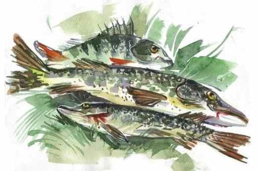 buy original art online fish painting