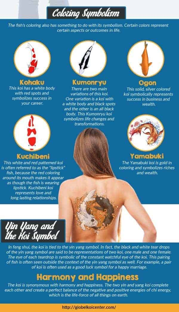 Koi Fish Tattoo Meaning Color, Direction, and More you ...