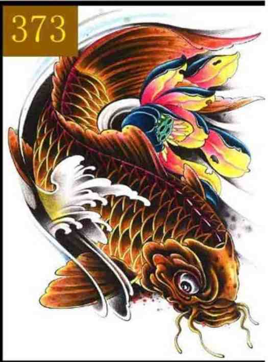 koi fish meaning in koi fish tattoo with lotus flower