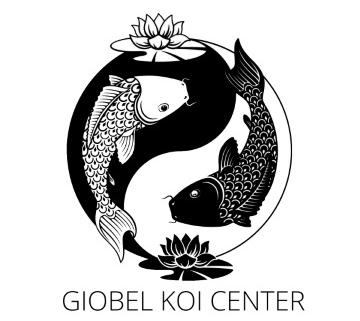 koi fish painting, koi fish jewelry, koi fish for sale philippines
