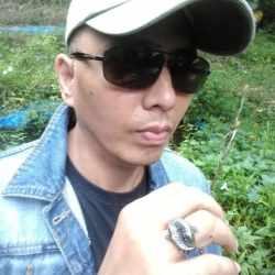 koi fish titanium yin yang rings