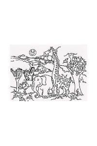 disegni da colorare per bambini di 6 anni Animali