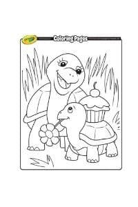 disegni da colorare per bambini di 7 anni tartarughe
