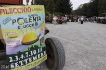 filecchio-sgranatura-granturco-8526.jpg