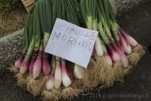 inaugurazione-mercato-contadino-11.jpg